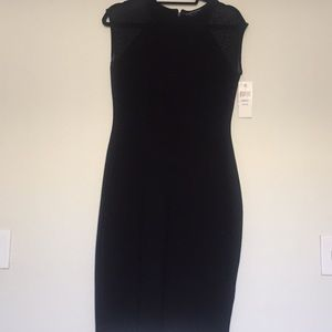 French connection LBD with sheer panels